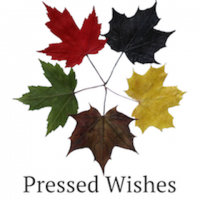 Pressed Wishes